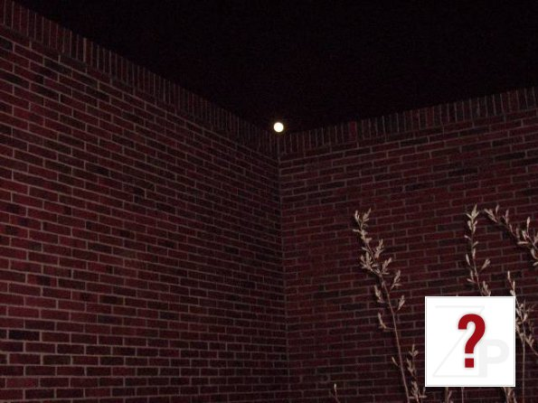 DIGITAL IMAGE